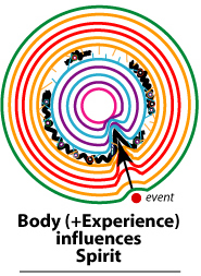 physical events influence the body holon and the spirit holon